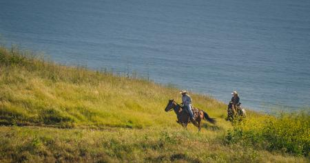 A man and woman riding horses through a grassy hill by the water