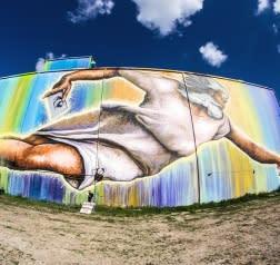 Preservons La Creation Mural en Houston