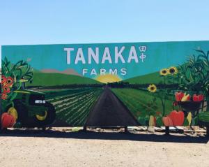 Tanaka Farms Mural