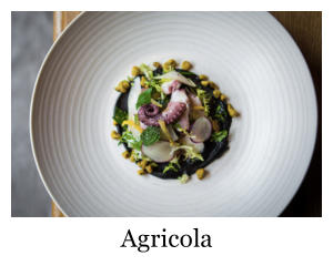 A plated meal of octopus from Agricola