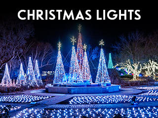 Christmas lights, Wichita