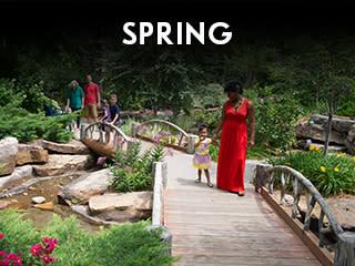 Seasons - Spring Widget