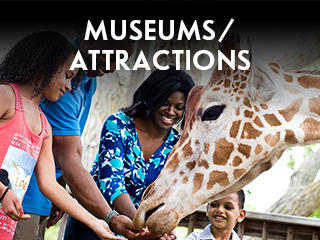 Wichita Museums Attractions