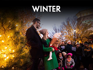 Seasons - Winter Widget