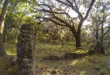 Cannon's Point Plantation Ruins