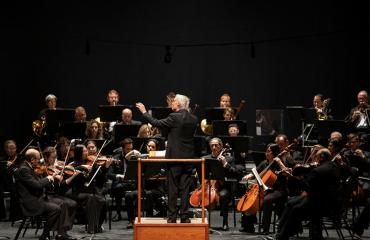 Pensacola Symphony Orchestra Presents Come Fly With Me: Music of Sinatra and More