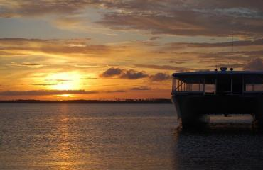 Premier Dolphin Cruise - Sunset Cruise