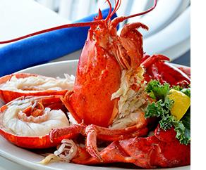 Finn's Harborside in Providence Lobster Meal