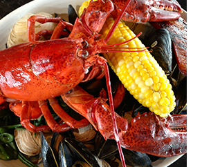 Legal Sea Foods in Providence Lobster Meal