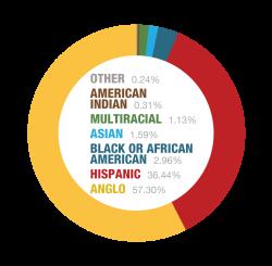 Population - Race