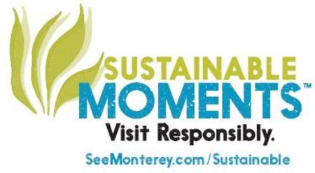 New SM Logo