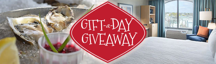 Gift-A-Day Giveaway: Day 10