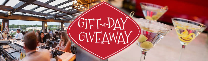 Gift-A-Day Giveaway: Day 3