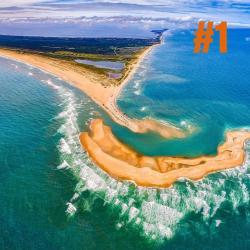 shelly island