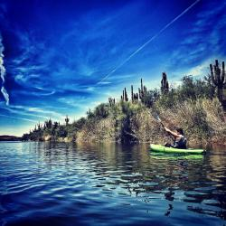 Salt River Kayaking - Crowdriff