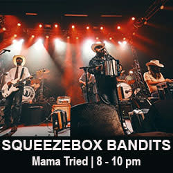 Squeezebox Bandits small