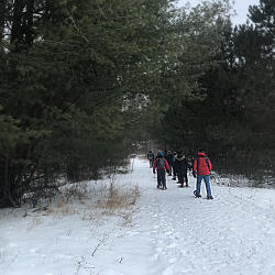 Guided Snowshoe Hike