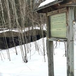 Interpretive Sign at Alligator Hill Trail