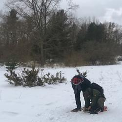 Snowshoers Assist Each Other