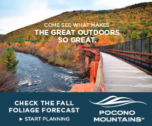 2019 Fall Marketing Campaign - Fall Foliage Online Banner Ad - Pocono Mountains Visitors Bureau