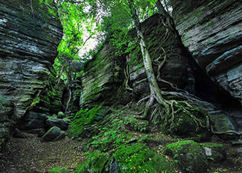 Panama Rocks Scenic Park - Photo by Jonathan Weston