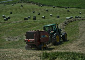 Douglas Graham Making Hay