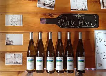 Windham Vineyards - Photo Courtesy of Windham Vineyards