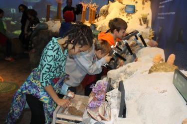 Children looking at fossils at the Falls of the Ohio Interpretive Center