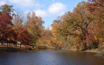Clark State Forest in the Fall