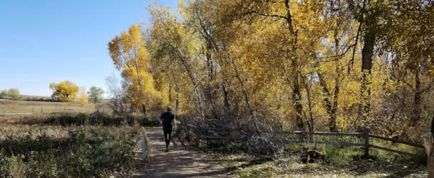 Lone Hiker on Bobolink Trail