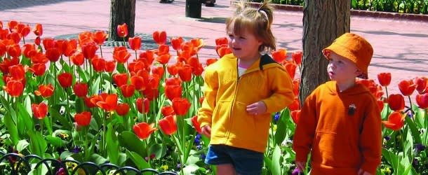 Kids on Pearl Street with Tulips