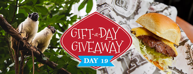 Day 19 Gift-A-Day Giveaway