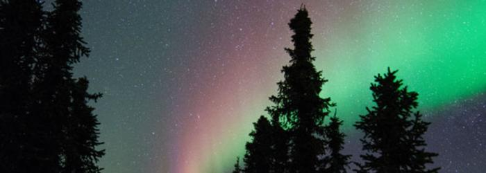 Northern Lights Viewing - Fairbanks ALaska