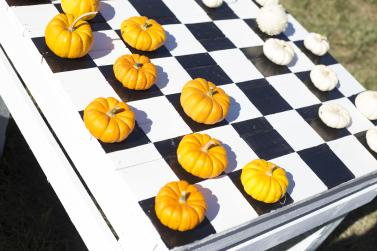Pumpkin Checkers at McMillan Farms
