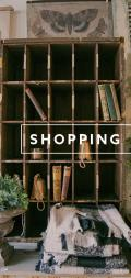 2019 shopping cover