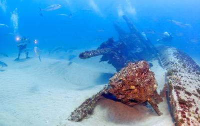 Graveyard of the Atlantic Scuba Diving Shipwreck