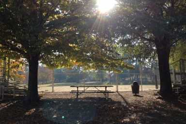 Ellis Park