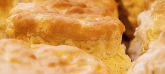 The Big Biscuit - Biscuits