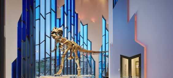 MAP T Rex