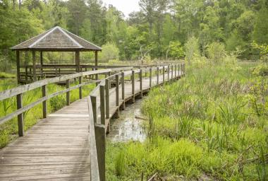 Newman Wetlands Center boardwalk