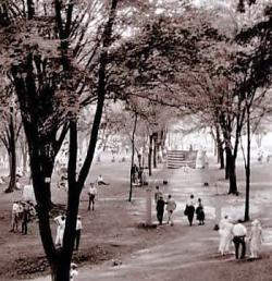 Rose Island Walkway in the 1920s