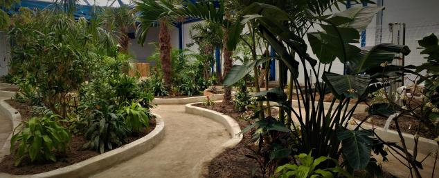 Path through the Butterfly Pavilion in Westminster