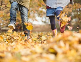 Explore Wichita This Fall