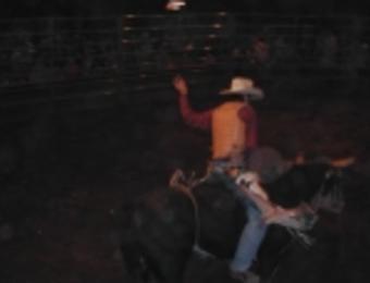 Club Rodeo Bull Rider Visit Wichita