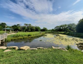 Chisholm Creek Park 2