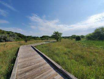Chisholm Creek Park 3