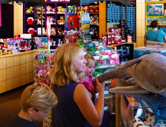 Exploration Place Explore Store