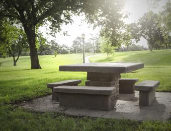 Fairmount Park Picnic Table