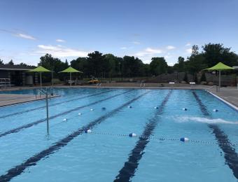 Harvest Park Pool 6
