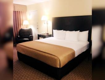 Clarion King Room Visit Wichita
